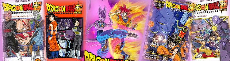 Dragon Ball Super 41 : Ultra Instinct